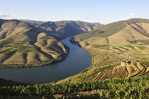 Cruises Aboard Ms Douro Queen Travelmarvel