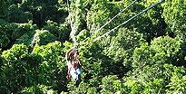 Canopy Tour & Challenge Course Antigua