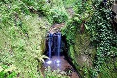 Shanklin Chine Waterfall, Isle of Wight