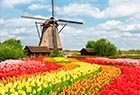 Holidays in Holland