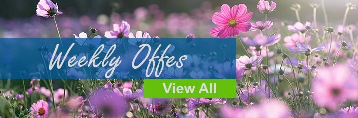 Wekly Offers from Yorkshire