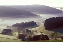 The Black Forest holidays
