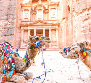 Jordan Guided Tours