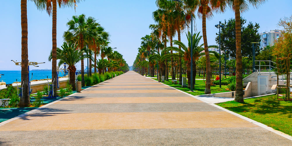 Top 12 Things To Do in Limassol