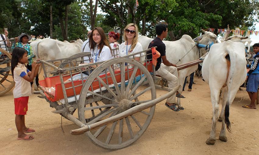 Oudong Oxcart Ride