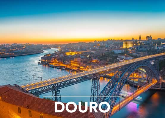 Douro River Cruises