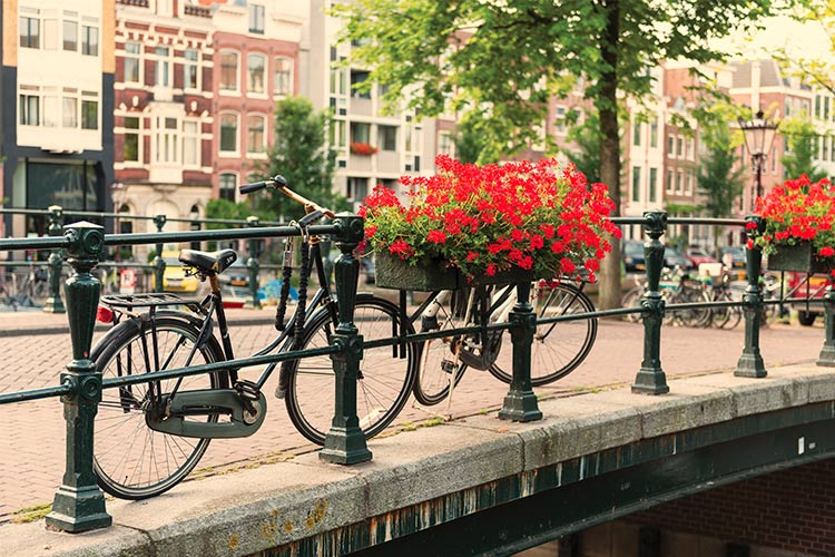 APT - Amsterdam