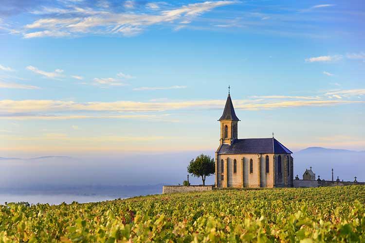 Beaujolais, France