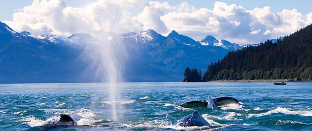 Celebrity Solstice - Alaska