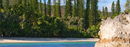 Islas de los Pinos: Nueva Caledonia