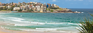 Bondi Beach: surf y fish & chips