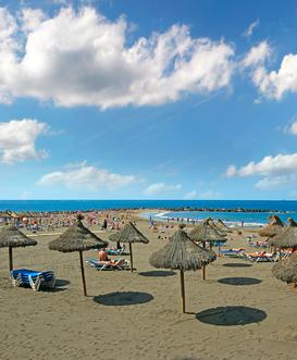 Holidays to Playa de las Americas