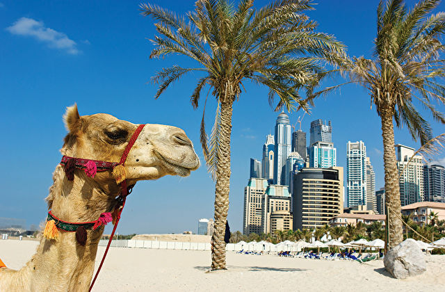 Dubai The Palm & Voyage to the UK