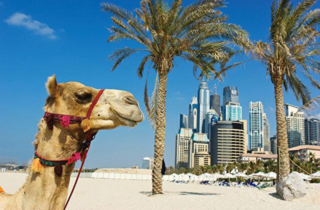 Dubai The Palm & Voyage to the UK