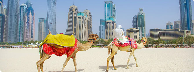 Royal Caribbean Cruises with the Dubai & Emirates Cruises and Splendour of the seas