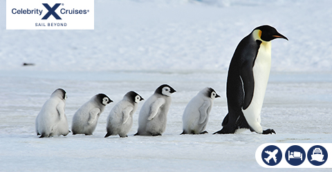 LUXURY ANTARCTIC CRUISE HOLIDAY