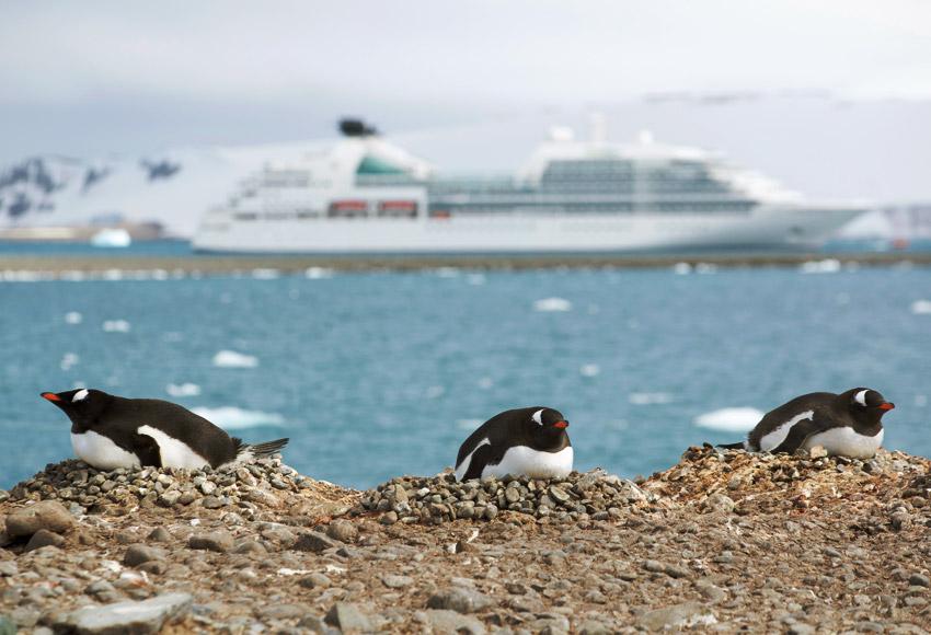 Seabourn Destination