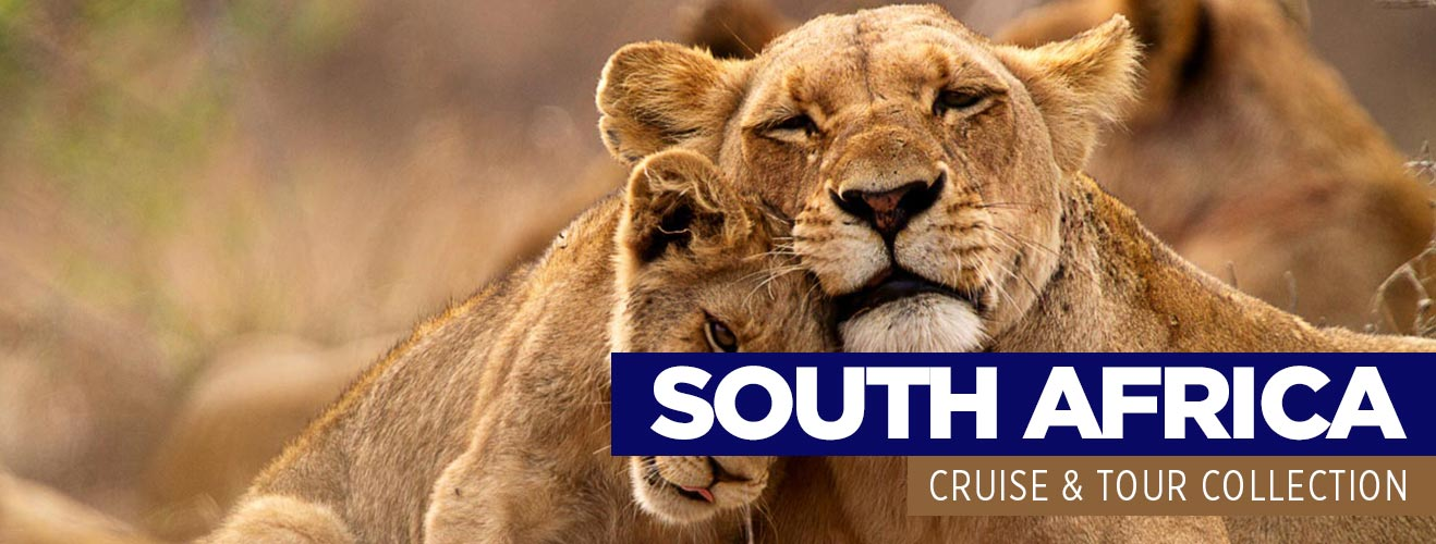cruise and tour deals south africa