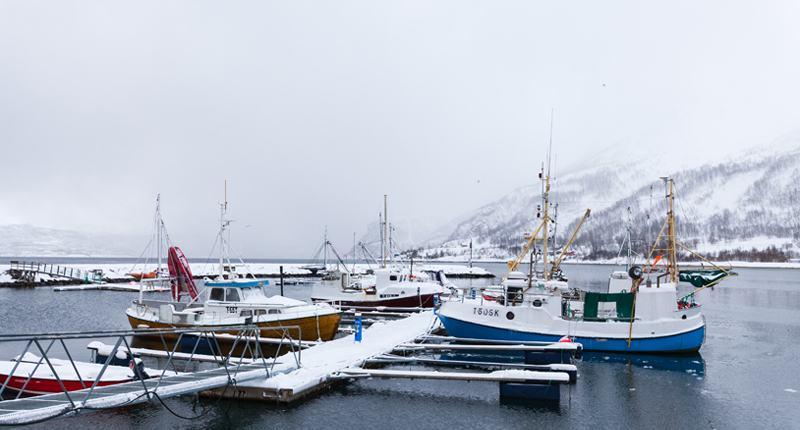 Cruceros por el Círculo Ártico