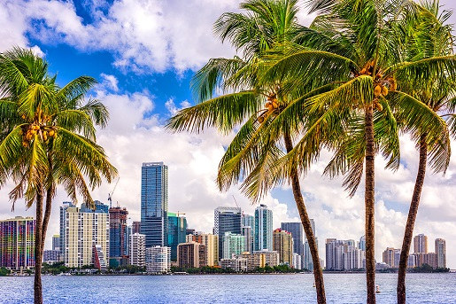 Miami with Western Caribbean Cruise