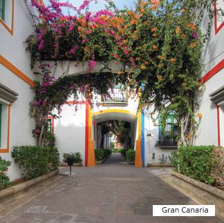 destination gran canaria