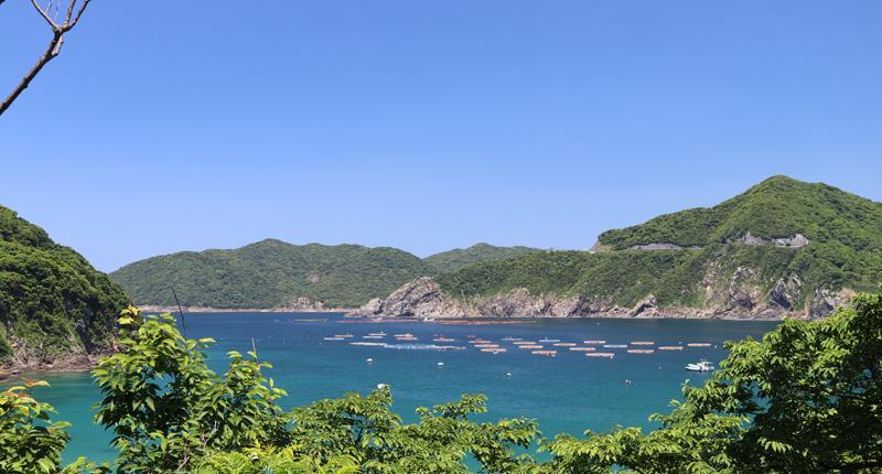 Cruceros por Kagoshima en Japón