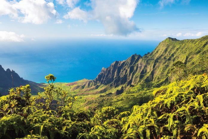 Dois navios da Holland America Line trazem o espírito do Aloha no Havaí em nove cruzeiros prolongados em 2018-19