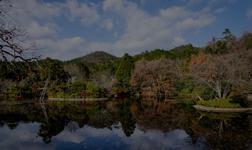 Crucero por Kyoto en Japón