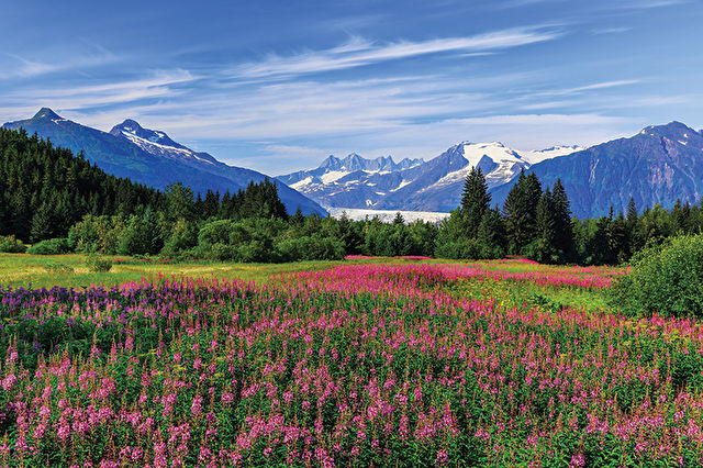 Ultimate Alaska & Pacific Northwest Fly-Cruise