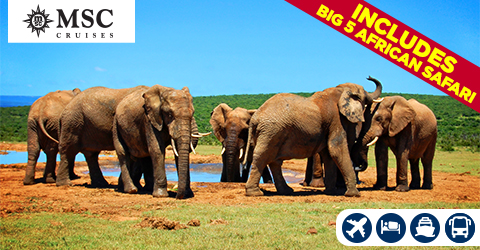 VOYAGE FROM DURBAN TO VENICE WITH A BIG 5 AFRICAN SAFARI EXPERIENCE