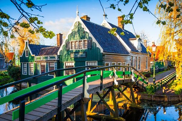 Amsterdam & Bulbfields Spectacular