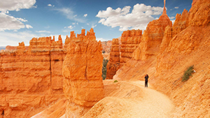 Nat Geo Grand Canyon, Bryce, and Zion National Parks