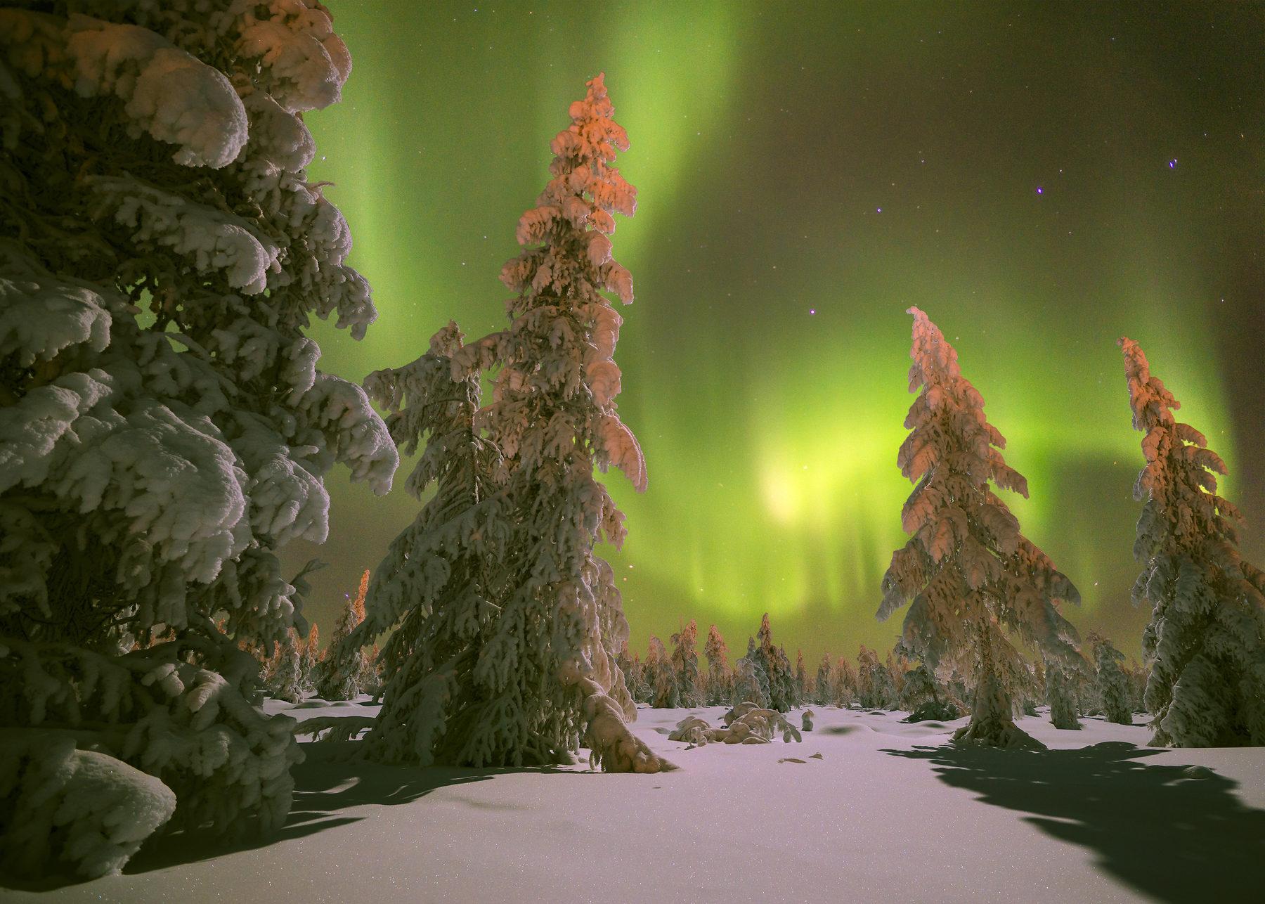 Arctic Comfort Hotel 00 - December Image