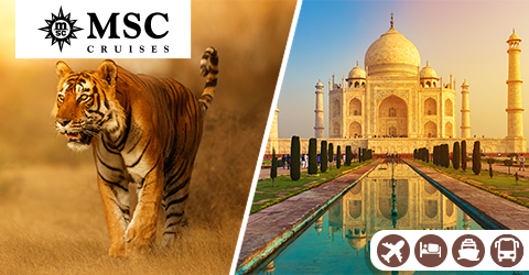 TAJ & TIGERS CRUISE AND TOUR