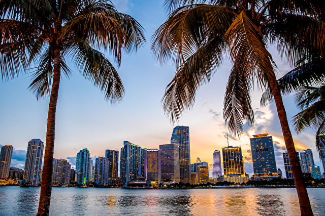 Miami Nights with Caribbean Sights