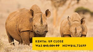 Nat Geo Kenya: Up Close with Elephants, Rhinos and Big Cats