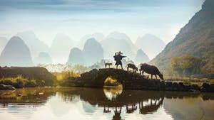 Nat Geo China: Imperial Treasures and Natural Wonders