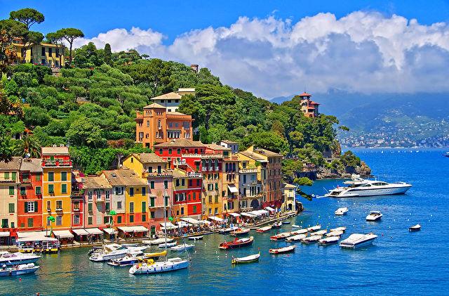 Italian Med Fly-Cruise