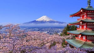 Nat Geo Japan Private Expedition