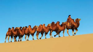 Nat Geo Mongolia Private Expedition