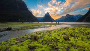 Nat Geo New Zealand Private Expedition