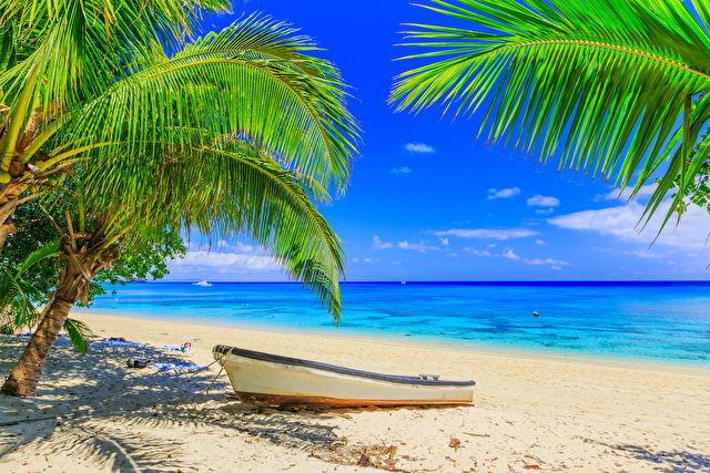 Forever Fiji from Sydney