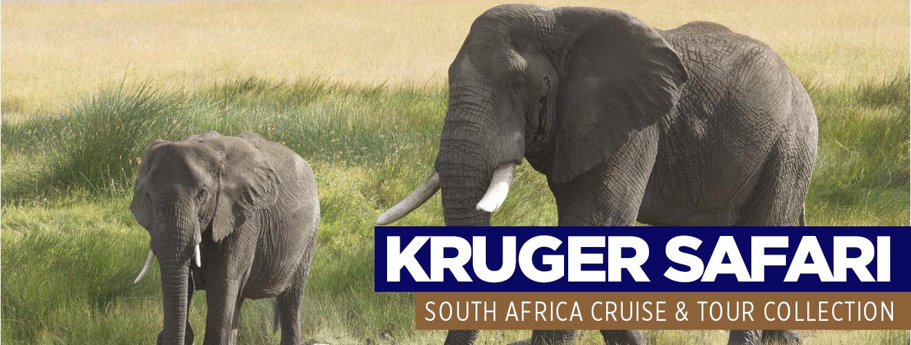 Kruger safari cruise and tour