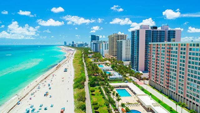 Miami & Caribbean Taster