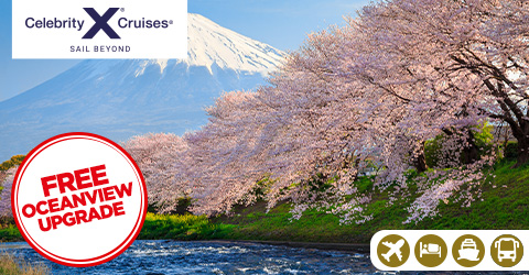 INTENSIVE JAPAN TOUR & CRUISE