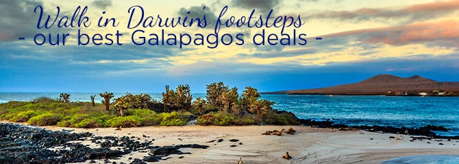 Cruise1st Galapagos Cruises
