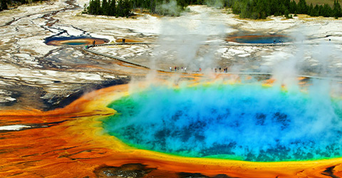 YELLOWSTONE & THE CANADIAN ROCKIES