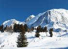 France Ski Holidays