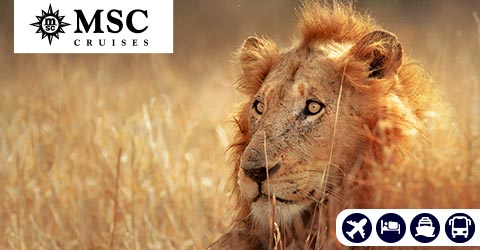 SOUTHERN AFRICA CRUISE AND KRUGER SAFARI